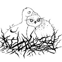 Personal and Commercial Use Baby Owl and Duck Illustration