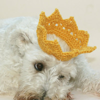 Dog crown gold crochet Puppies first pictures Photo Prop. Great for cats too. Holiday animal hat