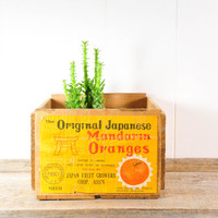 Vintage Mandarin Orange Wood Crate
