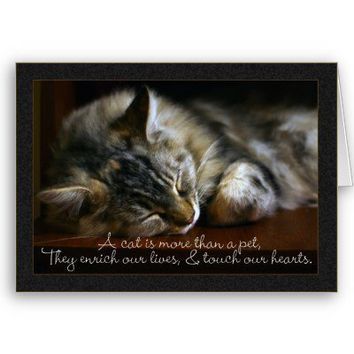 Pet Cat Sympathy Card, Loss Of Pet from Zazzle.com