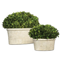 'Oval Domes' Preserved Boxwood Decorations (Set of 2)