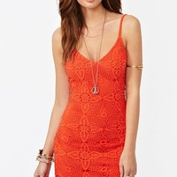 Aurora Lace Dress - Poppy  in  Clothes at Nasty Gal
