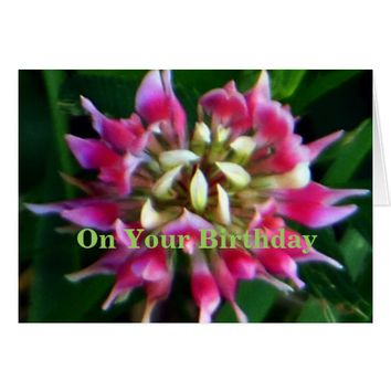 Old Rose Explosive On Your Birthday Card