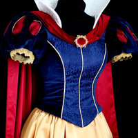 Snow White Parks Costume- Embroidered Bodice