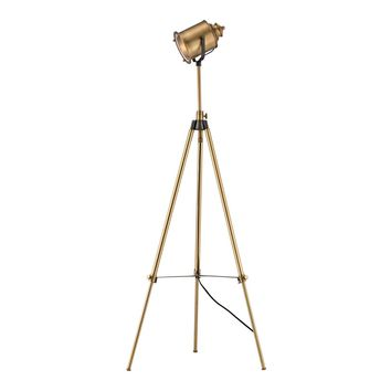 Ethan Floor Lamp in Aged Brass Aged Brass