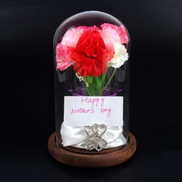 "OurWarm 4""*7"" Glass Display Dome with Wooden Base Bell Jar Mother's Days Gift Wedding Favors Birthday Party Supplies Home Decor"