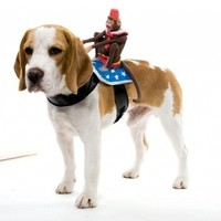 Paper Magic Group Dog Riders Monkey Costume,One Size Fits Most