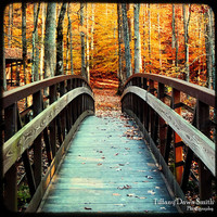 Fine Art Photograph - Autumn, Bridge, Nature, Fall, October, Park, Leaves, Orange, Yellow, Leaves, ttv, square Original Fine Art Photo
