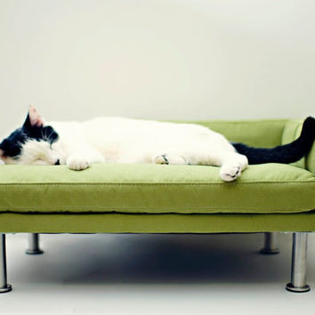 Modern pet bed chaise lounge chair by ModPet on Etsy