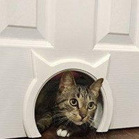 The Kitty Pass Interior Cat Door, Pet Door Hidden Litter Box.