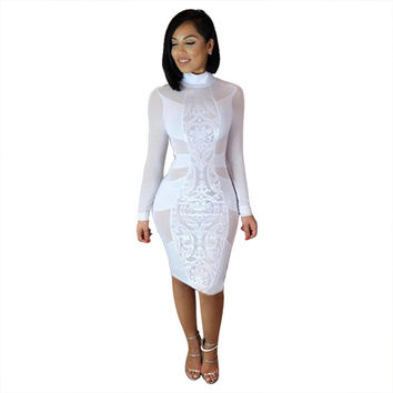 Long Sleeve Semi-Sheer Bodycon Midi Dress