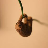 Miniature Polymer Clay Sloth can be worn as by whatsitsandwhosits