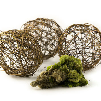 "Grapevine Ball Set, 4"", 3 Pack, Includes 5"" x 7"" Pack of Assorted Reindeer Moss"