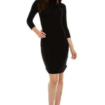 Turtle Neck Long Sleeves Dress