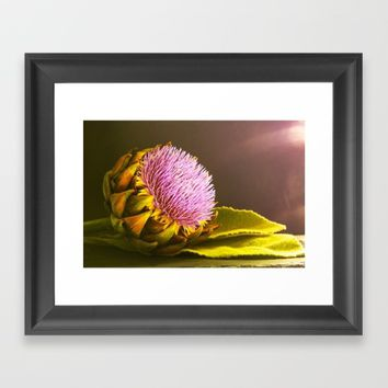 artichokes flower Framed Art Print by Tanja Riedel