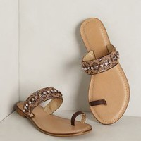 Salou Toe-Loop Sandals