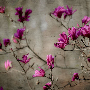 Purple floral photography spring garden art purple gray blossoms rustic woodland photograph enchanting garden art  purple nature macro