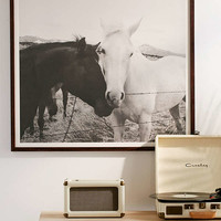 Kevin Russ Horse Cuddle Art Print | Urban Outfitters