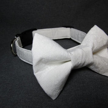 Designer Dog Collar - White and Ivory Damask dog collar and bowtie - Wedding dog collar, bow tie dog collar
