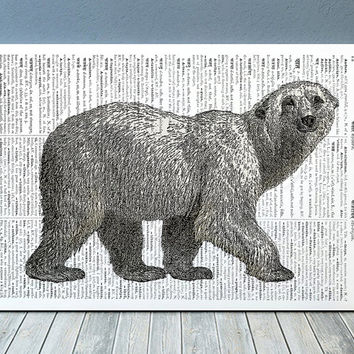 Nature print Bear art Animal poster Wildlife print RTA691