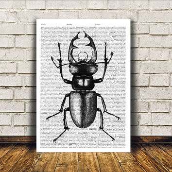 Stag beetle poster Insect art Dictionary print Modern decor RTA411