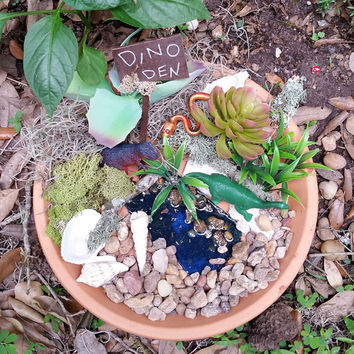 Dinosaur Garden Kit, Fairy Garden Supplies, Fairy Kits, Fairy House Kit, Miniature Garden Supplies, Terrarium Kit, Miniature Garden Items,