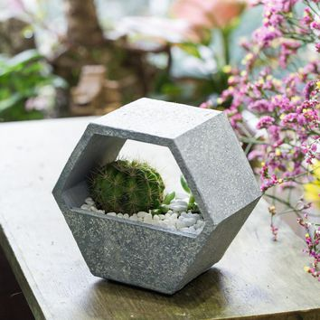 Indoor/Outdoor/Desktop Hexagon Succulent Flower Pot
