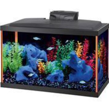 Aqueon Products - Glass - Aqueon Neoglow Aquarium Kit Rectangle