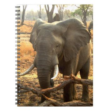 African Elephant image Spiral Notebook