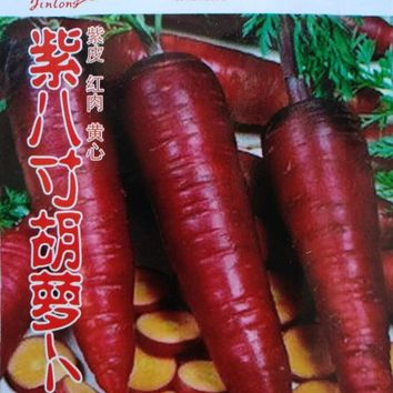 1 original pack 2g 300+pcs eight inches Purple carrots seeds,vegetable seeds Bonsai Plants Seeds for Home &Garden