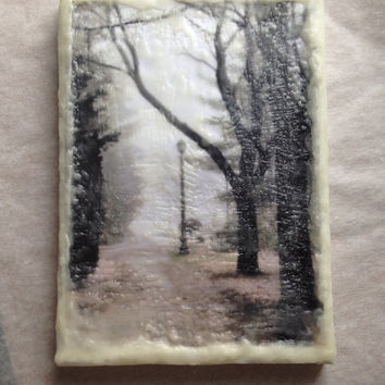 Photo Encaustic, Fine Art Photography, Wax Encaustic, Mixed Media, Original Art