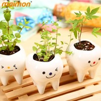 Creative DIY Mini Green Plants Bonsai with Ceramic Tooth Shaped Plants Pot Vanilla Seeds for Desktop Decoration
