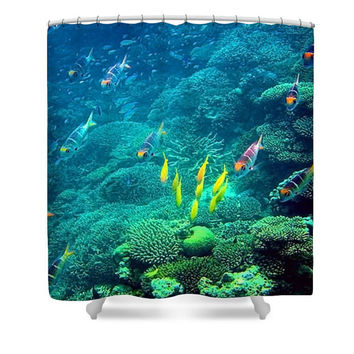 Blue shower curtain, blue bathroom decor, tropical fish, ocean shower curtain, fish shower curtain, sea life, colorful fish, underwater