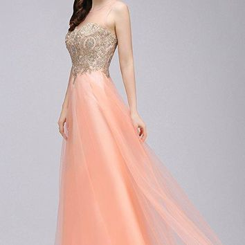 Long Lace Appliques Tulle Evening Dresses Backless Evening Dress Gown