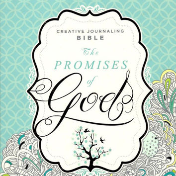 The Promises of God Creative Journaling Bible - Modern English Version (MEV) - Jesus words in Red text