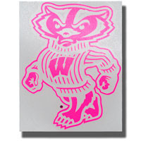 Potter Decals Pink Bucky Decal (Outside)