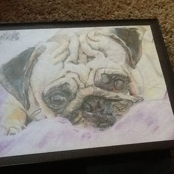 Spencer Sinclair's Original Pug Drawing