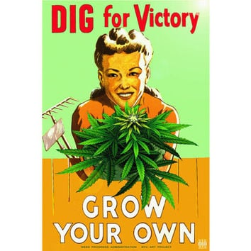 "Marijuana Ganja Weed New Retro Pot Humor Poster - WPA Wartime-type Art -available in 24""x 36"",  20""x 30"" or 12"" x 18"" sizes -- Print 206"