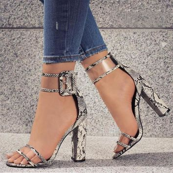Super High Shoes Women Pumps Sexy Clear Transparent Strap Buckle Summer Sandals High H