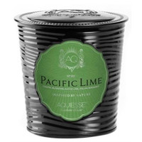 Aquiesse Portfolio Collection Pacific Lime Scented Soy Candle