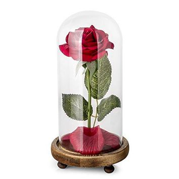 """""""Beauty and the Beast"""" Full Kit, Red Silk Rose and Led Light with Fallen Petals in a Glass Dome on a Wooden Base"""