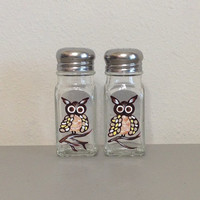 Salt and Pepper Shaker Set with Hand Painted Owls