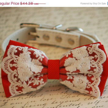 Red Dog Bow Tie, Lace Bow tie, Vintage Wedding, Red Pet accessory, Love Red, Dog Lovers, Cute, Chic, Proposal Idea