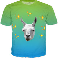 The llama On Gradients