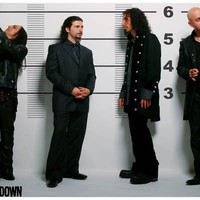 System of a Down Police Line-Up Poster 11x17