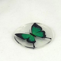 Green Butterfly Shrinky Dinks Shrink Plastic by theotherstacey