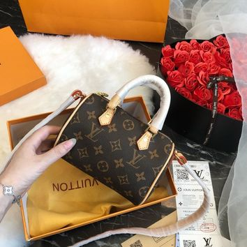 Louis Vuitton LV  Classic pillow bag