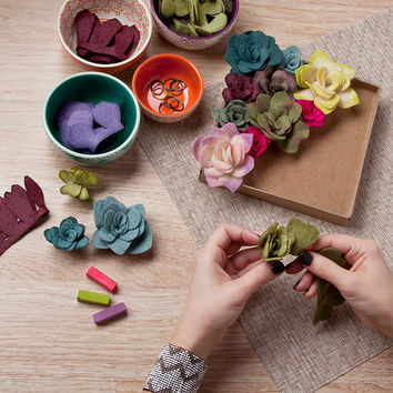 Felt Succulents Kit | DIY Plant Craft Kit