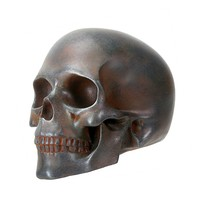 Rusted Skull by Summit Collection