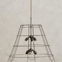 Medium Conduit Pendant Lamp by Anthropologie Black One Size Lighting